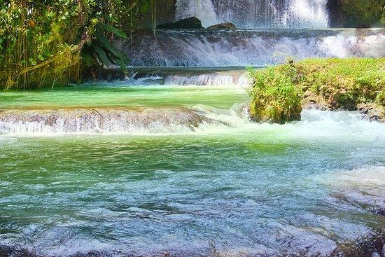 Lanzadera Dunn's River Falls desde...