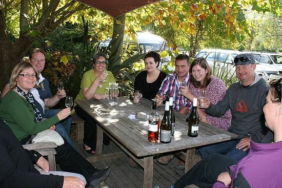 Hawkes Bay Wine Tour - Half Day