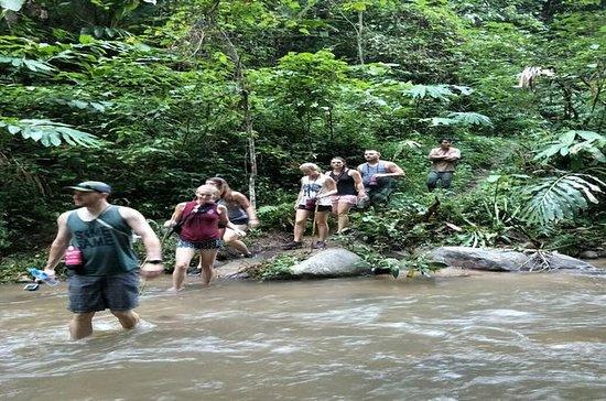 Excursión en cascada Aventura + Cueva en Wat Thum Chiang Dao Viaje privado: Full Day Private Chiang Dao Trekking and Sticky Waterfall Trip from Chiang Mai