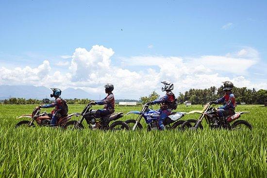 Explore Bali Invisível Beleza...
