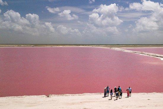 Las Coloradas laghi rosa, tour in