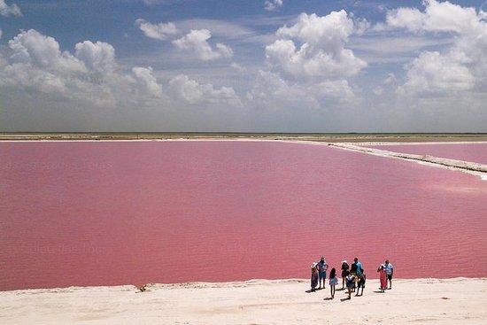 Petit groupe Las Coloradas Pink Lakes...
