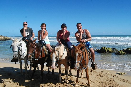 HorseBack Riding and Swim from ...
