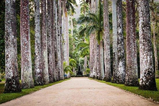 Jardim Botânico do Rio de Janeiro...