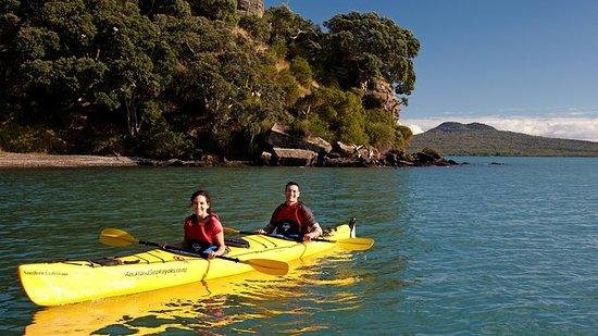 Demi-journée en kayak sur l'île de...