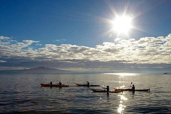 Sunset kayak tour to Rangitito Island