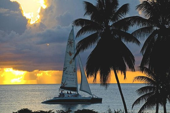 Snorkel Sunset Cruise en Barbados