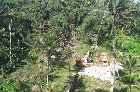 Tour Privado de Ubud Incluindo Jungle...