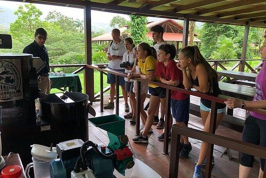 コスタリカの熱帯雨林でのコーヒー&チョコレートツアー
