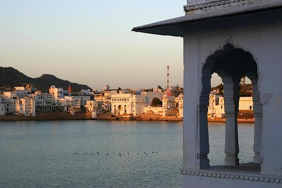 Jaipur Pushkar Private Day Tour