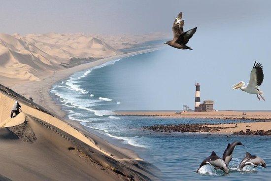 Marine Desert Adventure Full Day Tour...