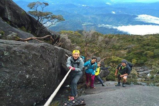 Mount Kinabalu Klatring 3 dager 2...