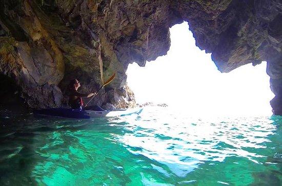 Caiaque guiado e snorkeling na Ponta...