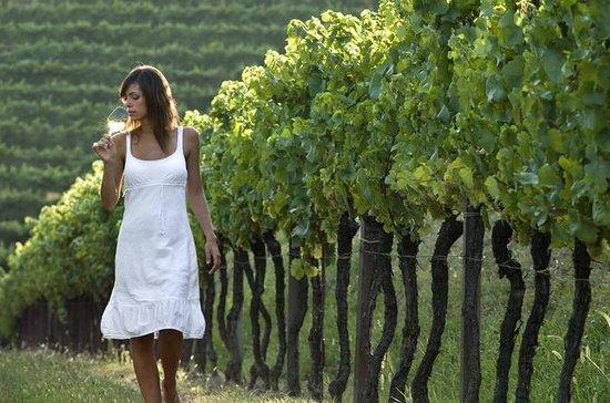 Half-Day Countryside wine tour near...
