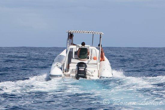 Cocoboat: Moteur Hors-bord puissant de 200cv