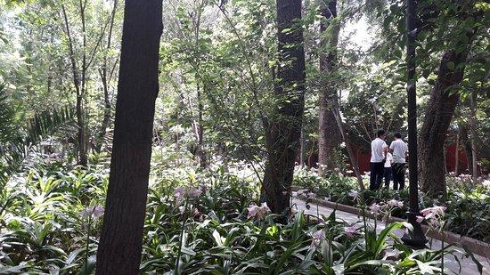 Jardin Embajadoras