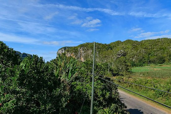 Landscape - Hostal Palmarito Photo
