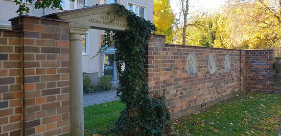 """Reliefwand """"Geschichte der Alten Universitat"""""""