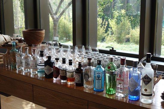 Amanyangyun : Gin and tonic bar waiting for you