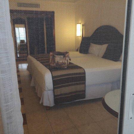 Foto de la habitacion tomada desde el balcon con la puerta anti mosquitos cerrada.