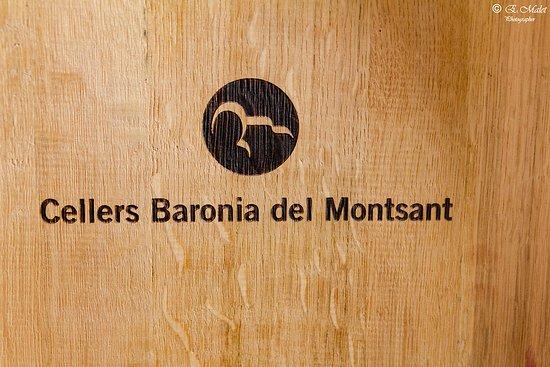 写真Cellers Baronia Del Montsant枚