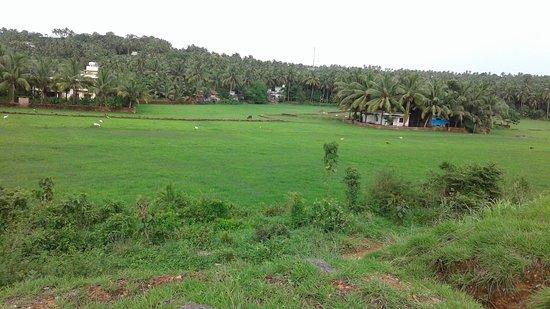 Puthenvelikara صورة فوتوغرافية