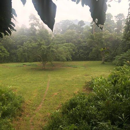 Zdjęcie Kuala Tahan
