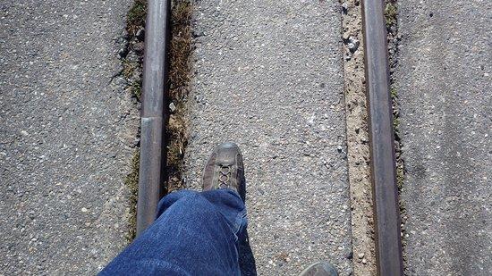 Maine Narrow Gauge Railroad Company and Museum รูปภาพ
