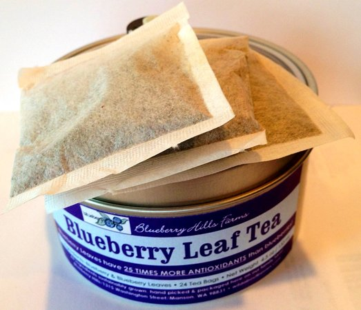 Blueberry Leaf Tea -- made by hand at Blueberry Hills Farms