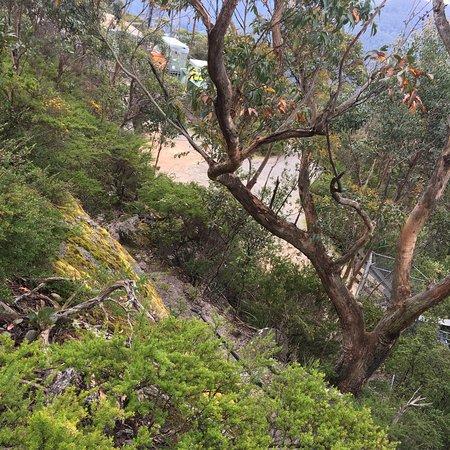写真Mt Oberon Summit Walk枚