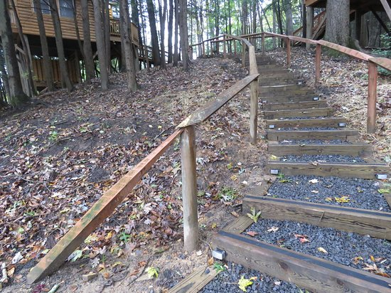 Beaver, WV: View of the steep steps (30) going up to Wild and Wonderful Treehouse.