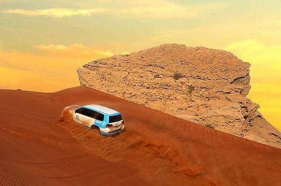 Safari Fossil Red Dunes & Camel...