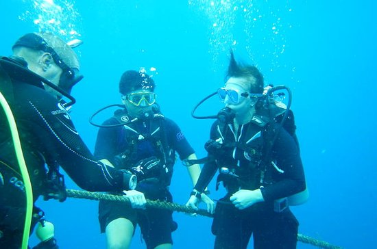 Scuba Dive Course with Free...