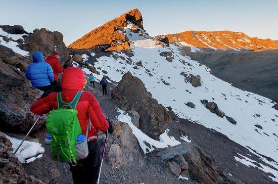 Kilimandjaro 7 jours - Itinéraire...