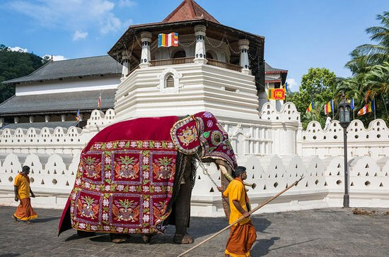 Feel your dream with Sri Lanka