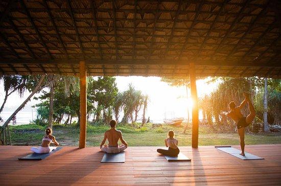 Wellness, Culture & Nature in Sri...