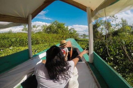 Navagacion à l'Amazone - Iquitos