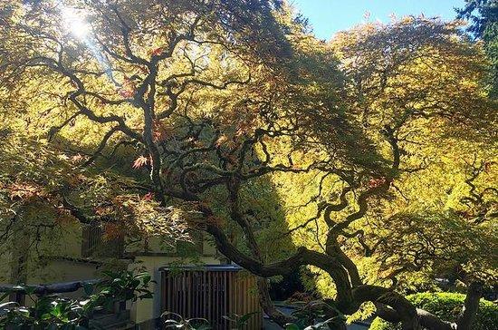 Portland Meditative Garden Tour: Japanese and Chinese Gardens: Portland Meditative Garden Tour: Japanese and Chinese Gardens
