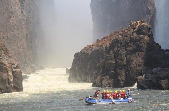 Zambezi White Water Rafting En hel dag