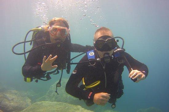 Try Dive (Discover Scuba Dive)