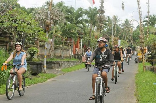 バリサイクリングツアー