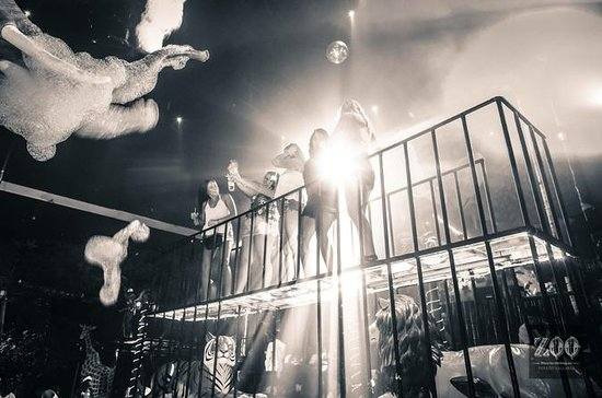 Paquete VIP Zoo Nightclub en Puerto...
