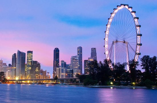 Singapore Half-Day City Tour with...