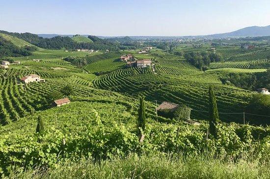 ヴェネツィアからのProseccoワインツアー:3つのワイナリーとPairi…