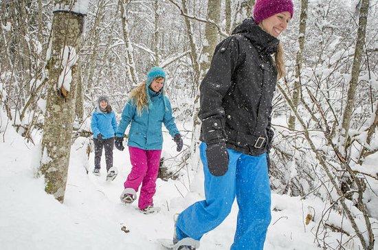 Quebec City Snowshoeing Tour