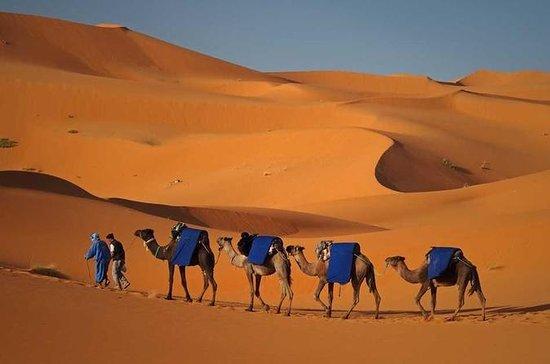 3 dagar 2 nätter Desert Trip från Fez ...