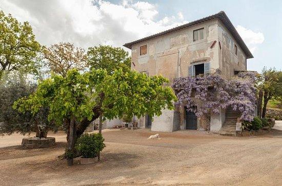 Semi-Privat Roma Vinvei Med Lunsj
