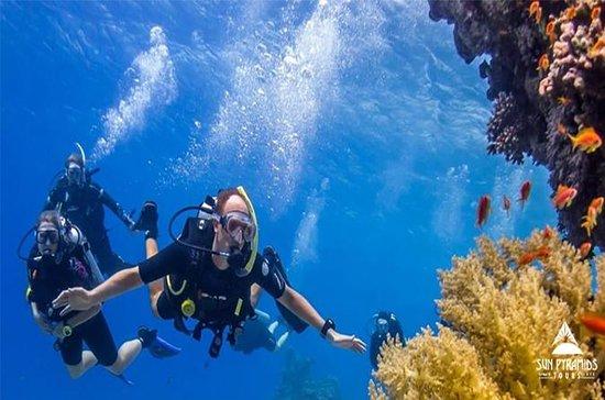 Les meilleurs snorkeling à Taba Egypte