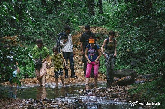 Trek naar Tambdi Surla Falls en ...