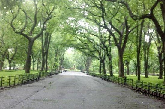 Tour en bicicleta por el parque...